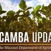 """Missouri prohibió el uso de dicamba durante el período de siembra de soja 2018 para """"resguardar a la agricultura"""""""