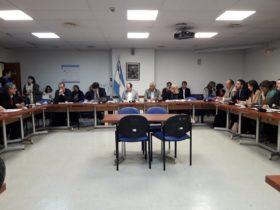 Los diputados creen que no están dadas las condiciones para declarar en emergencia económica al sector porcino