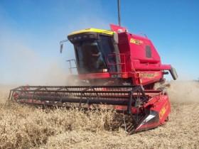 Vassalli y Claas concentran el negocio de exportación de cosechadoras