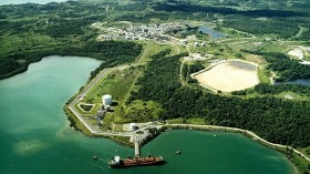 El gobierno brasileño invirtió 42 millones de dólares en una compañía que genera energía eléctrica a partir de eucaliptus