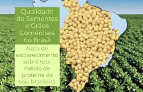 Embrapa rechaza título catástrofe de Reuters al asegurar que el nivel proteico de la soja brasileña no registra variaciones importantes