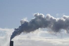 La estafa de la década: se derrumbó el mercado de bonos de carbono