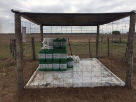 Envases de fitosanitarios: tres provincias de base agropecuaria aún no designaron autoridades para comenzar a trabajar en el nuevo régimen