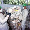 El programa brasileño de gestión de envases de agroquímicos procesará este año más de 40.000 toneladas: en la Argentina es una cuenta pendiente
