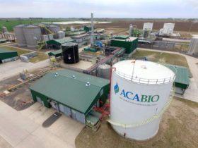 Llegó el primer ajuste del año del precio de los biocombustibles destinados al mercado interno: apenas un 10%