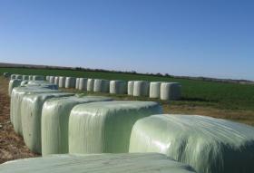 El gobierno argentino anuncia por segunda vez la habilitación del mercado chino para fardos de alfalfa: apenas se colocaron 500 toneladas en ese destino