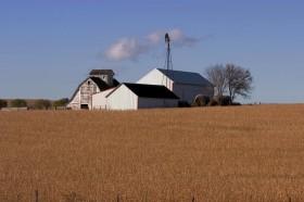 """En lo inmediato la soja en EE.UU. es una """"bomba de tiempo"""": esperar hasta fin de año es apostar al bingo climático"""