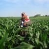 Este año volvió a caer el precio nominal de la tierra en Iowa: pero siguió creciendo medido en valor soja