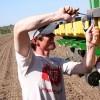"""Fuerte suba del maíz en EE.UU. por retrasos en la siembra: el mercado local sigue planchado para mantener el """"subsidio pollero"""""""