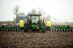 Los operadores de fondos de inversión creen que los precios de la soja ya encontraron su piso: no proyectan lo mismo para el maíz