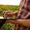 Alerta Argentina: se derrumban los precios de la soja ante la expectativa de una súper cosecha estadounidense