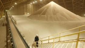 Comenzó a desacelerarse la recuperación de los precios internacionales de los fertilizantes fosforados