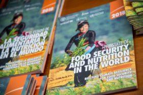 FAO alerta por el crecimiento del hambre en el mundo: 2020 fue declarado como el Año Internacional de la Sanidad Vegetal