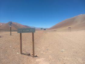 Corredor Bioceánico: autoridades regionales de Argentina y Chile buscan que los gobiernos centrales consideren estratégica una obra para integrarse con China