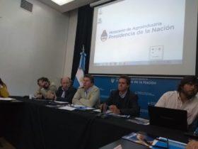 Tamberos volvieron a pedir al gobierno un salvavidas para salir de la crisis: Sammartino cree que la respuesta debe provenir del mercado