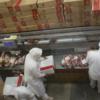 Temor por una posible nueva intervención china para reducir el precio de la carne vacuna importada