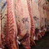 El gobierno desmanteló las restricciones para exportar carne con el objetivo de generar divisas: pero ya es tarde