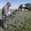 Crecen las importaciones argentinas de glifosato: los precios del herbicida cayeron 15% en el último año