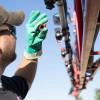 Ranking de sobrecostos de herbicidas en campos con malezas resistentes al glifosato: cuáles son las zonas más comprometidas