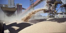 Sin sorpresas: la soja de primera 2019/20 ya incorporó el aumento de derechos de exportación