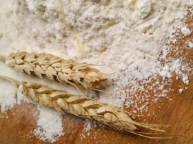 Argentinada: el precio de la harina ya comenzó a registrar por anticipado la eliminación de retenciones al trigo