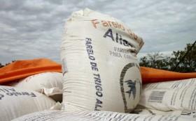 Segunda señal del incendio: industriales farináceos brasileños evalúan importar harina de trigo de Turquía