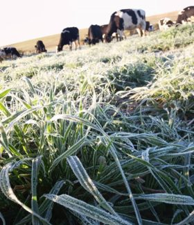 Esta semana el ingreso de un frente frío provocará heladas en la zona pampeana