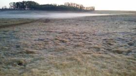 Llegó la ola polar: probables heladas para el fin de semana en el sur de la zona pampeana