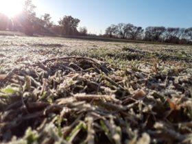 Mañana se prevén heladas intensas en la zona central del país