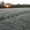 Este fin de semana llegan las primeras heladas intensas: sigue el tiempo ideal para cosechar