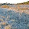 Mañana el frente frío generará formación de heladas sobre buena parte del centro y norte del país