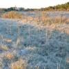 El martes se prevé el ingreso de una nueva ola polar: alerta por heladas intensas en la mayor parte de las regiones productivas