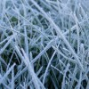 El miércoles ingresará un intenso frente frío sobre la región central del país