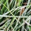 La semana que viene ingresará una masa de aire frío sobre la región central del país: el miércoles se prevén muy bajas temperaturas