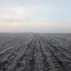 El sábado regresa la probabilidad de heladas sobre la región pampeana: pero no serán tan intensas