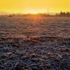 Mañana se intensifica la ola polar: crece el riesgo de heladas sobre la región pampeana
