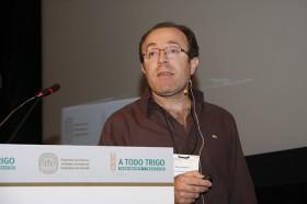 Se publicó el primer borrador del genoma del trigo: Argentina fue el único país latinoamericano en integrar el comité del consorcio internacional que concretó el logro histórico