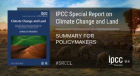 """Importante para la ganadería del Mercosur: IPCC reconoce que """"las oportunidades para el secuestro de carbono en pasturas pueden ser significativas"""""""
