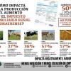 Tiempo de descuento: productores de 16 partidos bonaerenses afectados por excesos hídricos deberán afrontar el impuestazo por no tener declarada la emergencia