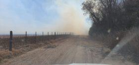 """Un proyecto legislativo propone congelar por 30 años las actividades realizadas en campos afectados por incendios """"provocados o accidentales"""""""