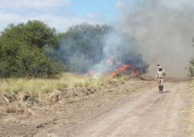 Lecciones de dos campañas complicadas: el impacto de los incendios fue menor en las zonas donde se trabajó en equipo