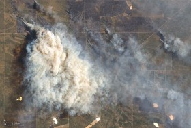 La Pampa: se oficializó la declaración de desastre agropecuario para zonas afectadas por incendios