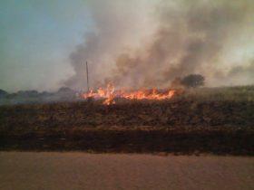 La Pampa: amplían la cantidad de zonas productivas declaradas en estado de emergencia agropecuaria por incendios