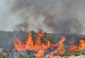 El lunes se prevén precipitaciones moderadas en las zonas afectadas por incendios