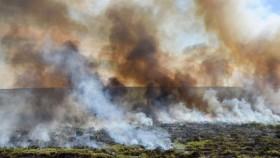 """A mediados de diciembre un informe del Ministerio de Ambiente recomendó monitorear Buenos Aires y La Pampa porque podían """"esperarse fuegos de comportamiento extremo"""""""