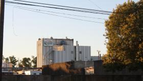 Buena noticia: se recupera el precio de exportación de la leche en polvo argentina de la mano de alza del petróleo