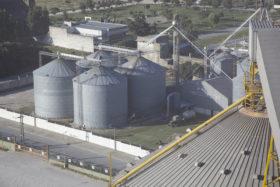 La capacidad ociosa de la industria aceitera argentina finalizará este año en torno al 45%