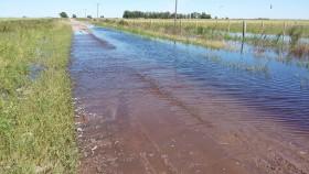 Qué vuelva la alfalfa: investigador del Conicet asegura que la agricultura continua es responsable de las inundaciones recurrentes