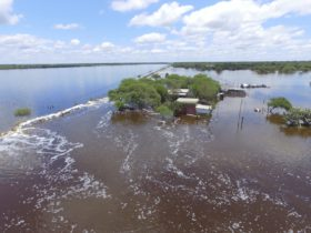 Alerta climática: esta semana se esperan nuevas lluvias abundantes en zonas afectadas por excesos hídricos