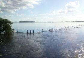 El posicionamiento alcista de los fondos especulativos en soja regresó al nivel presente en julio de 2015: en ambos casos por efecto de una inundación